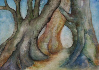 traer-akvarel-2-7