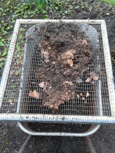 Foto af at der sigtes kompost.