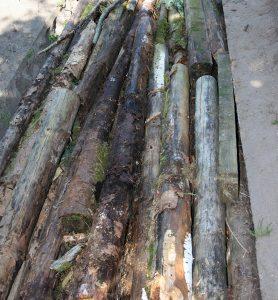 Hugelbedet fyldes op med træstykker